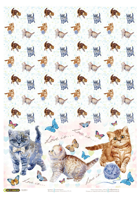 клинтон картинки кошек для скрапбукинга есть, далеко