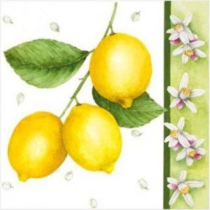 """Салфетки бумажные для декупажа """"Лимон"""""""