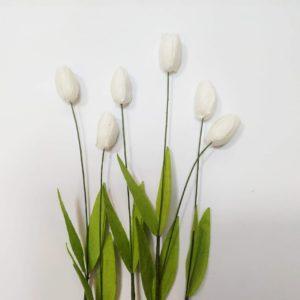 Тюльпан бумажный цвет белый
